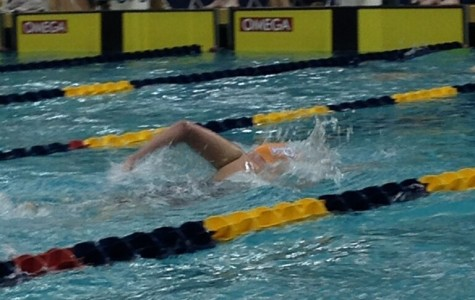 Marianna Markley swims the 500 freestyle at the state swim meet