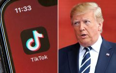President Trump's plan on banning TikTok and restricting the apps' use in the United States of America (Courtesy of Rolling Stone).